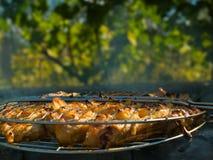 Grillnahaufnahme über Blättern Lizenzfreies Stockfoto
