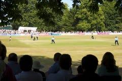Grillo del Sussex v Surrey T20 a Arundel Fotografie Stock Libere da Diritti