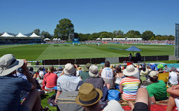 Grillo - muchedumbre del test match del San Esteban en el óvalo Christchurc de Hagley Imagen de archivo