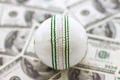Grillo y dinero Imagenes de archivo