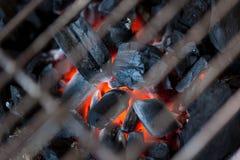 Grillsteenkool Stock Foto