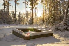 Grilstelle im schwedischen Holz Stockbild