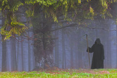 Grim Reaper. In the foggy wood royalty free stock images