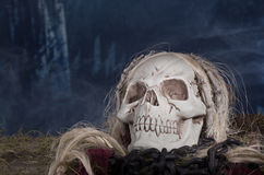 Grim Reaper Skull Stock Photo