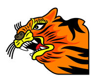 Grimace orange de tigre Photo libre de droits