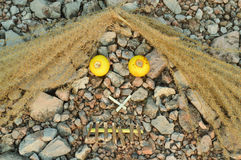 Grimace. Splicing various weeds grimace on gravel background Stock Photography