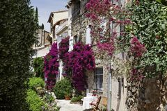Grimaud, Old Town Lane With Bougainvillea Glabra, Lesser Bougainvillea, Paper Flower, Cote D'Azur, Southern France, Europe Stock Image