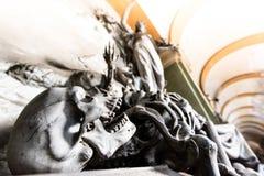 Grimmiger Reaper stockfotos