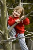 Grimper à un arbre Image libre de droits