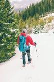 Grimpeur dans les montagnes d'hiver image libre de droits