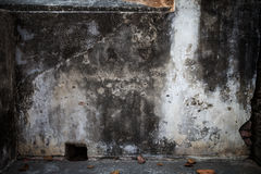 Grimy plastered wall Stock Images