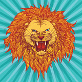 Grin lion. Vector illustration of a roaring grin lion vector illustration