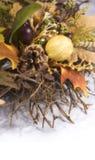 Grinalda 2 da colheita Imagens de Stock