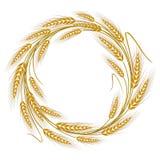Grinalda circular do quadro das orelhas do trigo ilustração do vetor