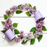 Grinalda colorida do lilás Imagens de Stock Royalty Free