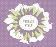 Grinalda com a flor do lírio de calla Fotos de Stock Royalty Free