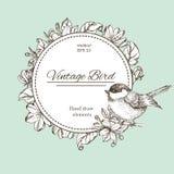 Grinalda com flores e pássaro Vector o quadro redondo do vintage com pássaros e flores Grinalda floral Rebecca 36 Fotografia de Stock Royalty Free