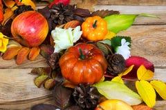 Grinalda da ação de graças com abóboras, maçã e cones Imagens de Stock