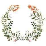 Grinalda da aquarela das hortaliças, mola Imagem de Stock Royalty Free