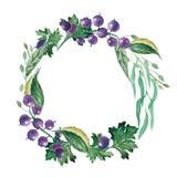 Grinalda da aquarela dos corintos e das folhas Fotografia de Stock