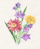 Grinalda da flor ilustração stock