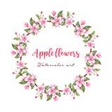Grinalda da flor da maçã no estilo da aquarela Fotografia de Stock Royalty Free