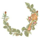 Grinalda da rosa da aquarela com chave, aquecimento da casa Fotografia de Stock Royalty Free