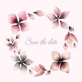 Grinalda das flores no estilo da aquarela no fundo branco Foto de Stock