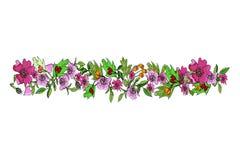 A grinalda das flores selvagens aumentou com fundo branco fotografia de stock royalty free