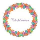 Grinalda das folhas de outono brilhantes Imagem de Stock Royalty Free