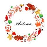 Grinalda das folhas de outono da aquarela Foto de Stock