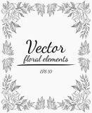 A grinalda de flores das rosas ramifica em um fundo cinzento Ilustração desenhada mão do vetor Elementos florais do vetor imagens de stock