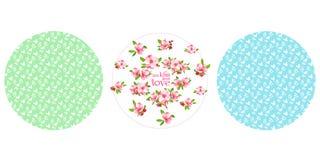 Grinalda de florescência japonesa da cereja e textura sem emenda Fotos de Stock