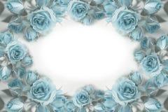 Grinalda de rosas azuis rosas Flores postcard Foto de Stock