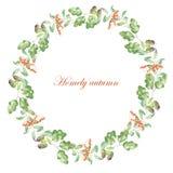 Grinalda de Rowan, das folhas do carvalho e da bolota Fotografia de Stock Royalty Free
