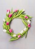 Grinalda de tulipas cor-de-rosa e brancas em uma parede cinzenta Imagem de Stock
