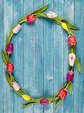 Grinalda delicado bonita da mola de tulipas coloridos Fotografia de Stock Royalty Free