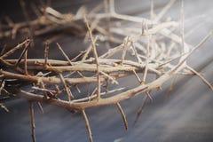 Grinalda do espinho na luz solar como um símbolo da morte e a ressurreição de Jesus Christ imagem de stock