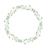 Grinalda do isolado das ervas no fundo branco Imagem de Stock Royalty Free