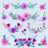 Grinalda do louro da flor da aquarela ajustada com borboleta Grinalda da flor da aquarela ilustração stock