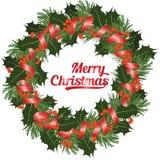 Grinalda do Natal do ramo do azevinho do ANG das coníferas com as bagas no backgriound branco, ilustração do vetor Fotos de Stock Royalty Free