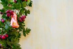 Grinalda do Natal na porta de madeira imagem de stock royalty free