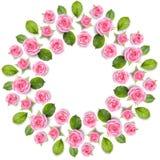 Grinalda do quadro de Rond feita das rosas cor-de-rosa isoladas no backgroun branco Fotos de Stock Royalty Free