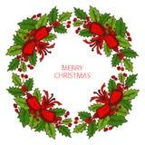 Grinalda dos feriados de inverno Imagem de Stock Royalty Free