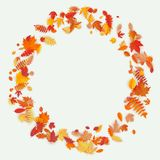 Grinalda feita de flores e de folhas do outono no fundo claro Composição do outono Eps 10 ilustração stock