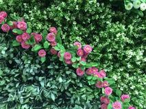 Grinalda floral Fotos de Stock Royalty Free