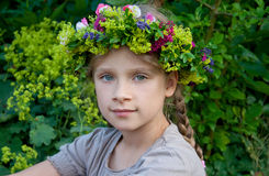Grinalda floral Imagem de Stock