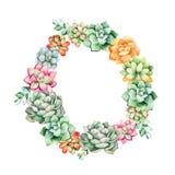 Grinalda floral colorida com folhas, planta suculento, ramos ilustração stock
