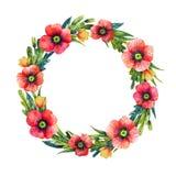 Grinalda floral da aquarela Flores do verão Ilustração desenhada mão Frame floral fotos de stock royalty free