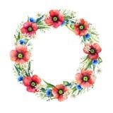 Grinalda floral da aquarela Flores do verão Ilustração desenhada mão Frame floral imagem de stock royalty free